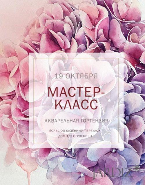 Акварельная-Гортензия-19-октября