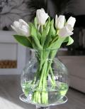 Белые-тюльпаны