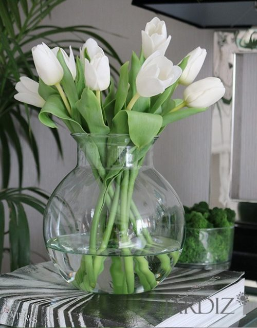 Белые-тюльпаны4