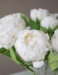Белый-шоколад4