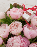 Розовое-бешенство2