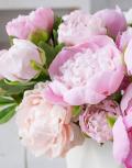 Розовое-бешенство3
